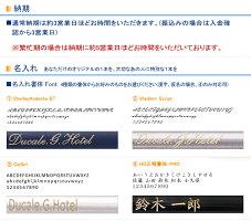 プラチナPLATINUMバランスFP万年筆ブラック/グリーン/ブルー/ワインレッド(F/Mサイズ)PLA-PGB-3000