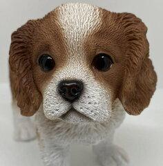 キャバリア 子犬 8cm×16cmx高さ12cm 重量:270g 素材ポリレジン[ユカワファニチュア]