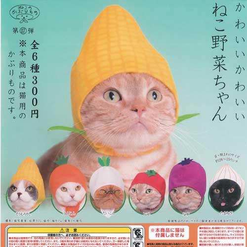 猫用品, キャットウェア  6 17