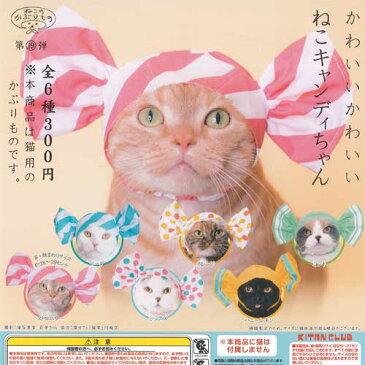 かわいいかわいい ねこキャンディちゃん 全6種セット ねこのかぶりもの第19弾 奇譚クラブ ガチャポン ガチャガチャ ガシャポン