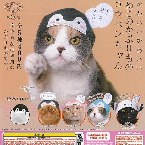 猫用品, キャットウェア  5