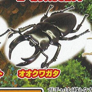 昆虫の森G大襲来ジャイアントスパイダー3:オオクワガタタカラトミーアーツガチャポンガチャガチャガシャポン