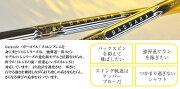 三菱レイヨン_バサラ_BASSARA_GG_33/43/53_Series_ドライバーシャフト_[リシャフト対応]