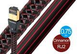 audioquest - RJ2 CINNAMON/0.75m(RJ2/CIN/0.75M)【店頭受取対応商品】【在庫有り即納】