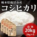 栃木県鹿沼市産コシヒカリ白米20kg(5kg×4)【送料無料:一部地域を除く】