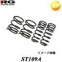 ST109A ヴィッツ SCP10 RG レーシングギア Racing gear ダ...