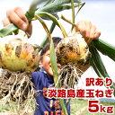 【訳あり】 玉ねぎ 5kg 兵庫県 淡路島産 たまねぎ 淡路島 タマネギ 淡路 玉葱 5キロ