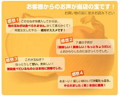 淡路島玉ねぎ9kgプレミアムたまねぎ!総合ランキング1位【送料無料】