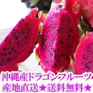 【送料無料】沖縄産ドラゴンフルーツ【送料無料】沖縄産ドラゴンフルーツ(レッドピタヤ)2.0kg...