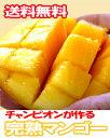 【送料無料】沖縄チャンピオンのネロメさんが作る!チャンピオンマンゴー!沖縄産完熟マンゴー...