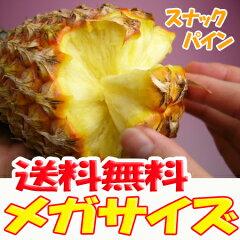 【送料無料】楽天ランキング第一位!幻のスナックパインこの夏!本物のパイナップルをお届け!...