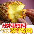 【業務用】沖縄産スナックパイン約20.0kg(16〜30個)自社管理農園から直送だから安心保証付き沖縄産フルーツ パイナップルの通販はお任せ下さい 父の日 ギフト