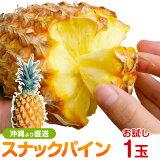 沖縄産スナックパイン(パイナップル)お試し1玉(500-600g) 送料無料自社栽培だから安心保証付パイナップル(沖縄産果物/南国フルーツ)専門店 ギフト 父の日 パインアップル