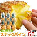 スナックパイン 沖縄産 パイナップル 約5.0kg 送料無料自社管理農園から直送だから安心保証付き沖縄産フルーツ パイナップル 母の日の通販はお任せ下さい ギフト 母の月 父の日の商品画像