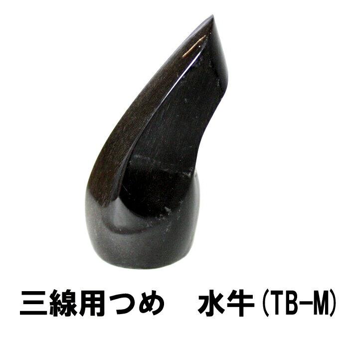 三線用アクセサリー・パーツ, つめ  TB-M 63mm x 25mm