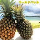 絶品パイナップル沖縄産ゴールドバレルお試し1玉 約1kg 送