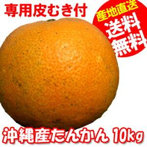 オレンジ フルーツ