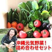 【送料無料】沖縄野菜詰め合わせセット7〜8種類【smtb-ms】B級グルメ【日本の島_送料無料】【日本の島_名産品】 島 らっきょう 沖縄 おきなわ 通販【RCP】lucky5days