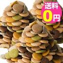 豆乳おからクッキー 蒟蒻マンナン入り 訳あり 3kg 1枚約16kcal 8種類のフレーバー(プレーン・胚芽・パンプキン・珈琲・ニンジン・セサミ・抹茶・ココア)