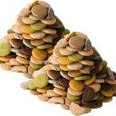 豆乳おからクッキー 蒟蒻マンナン入り 訳あり 2kg 1枚約16kcal 8種類のフレーバー(プレーン・胚芽・パンプキン・珈琲・ニンジン・セサミ・抹茶・ココア)