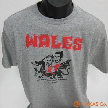 SOCCER JUNKY(サッカージャンキー) SJ16951 045 サッカージャンキー 『WALES』 Tシャツ Col.グレー