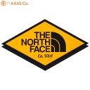 THE NORTH FACE(ノースフェイス) TNF Print S...