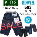 【SALE! ¥3888⇒¥1944】【3cmゆうパケット2...