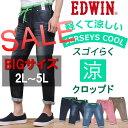 Er737c_2l-5l-sale