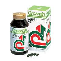 (送料込) グロスミン 2000粒