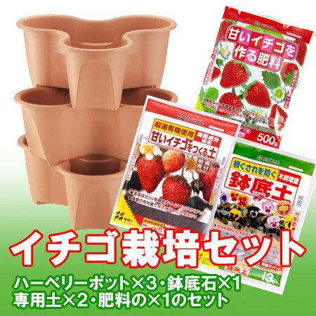 イチゴ栽培セット(ハーベリーポット)
