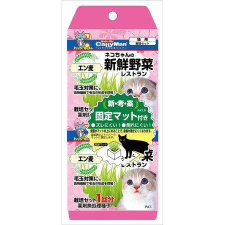 ネコちゃんの新鮮野菜レストラン2個パック【猫草毛玉簡単ずれない無農薬】