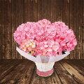 あじさい変わり咲きマイヒメピンク鉢カバー付き【母の日あじさいアジサイ紫陽花2017ギフトプレゼント鉢花】