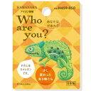ハマナカ ワッペン Who are you ? カメレオン ...