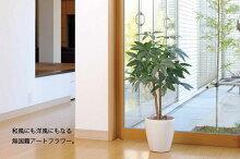 《光触媒観葉植物》カシワバゴム1.35〔フロアタイプ(ハイサイズ)〕