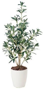 光触媒観葉植物 オリーブ90〔フロアタイプ(ミドルサイズ)〕/光触媒 観葉植物 ウンベラータ フェイクグリーン 花 胡蝶蘭 開店祝い 開業祝い 誕生祝い 造花 アートフレーム おしゃれ 5Lサイズ