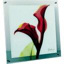 レントゲンアート X RAY ガラス アート「カラー レッド(Lサイズ)」/インテリア 壁掛け 額入り 額装込 ...