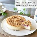 低糖質ベイクドチーズケーキ 北海道チーズ 5号 誕生日 ケーキ 糖質オフ ベイクドチーズ 天然甘味料 バースデー ギフト人気 スイーツ 苺 父の日 食べ物 洋菓子