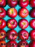 すぐにお届けします! 紅玉 アップルパイ!タルトタタンにおすすめです!5キロ箱(りんご約4~5キロ)目安〜35玉 サビ、傷あり、尻割れあり