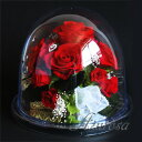 楽天プリザーブドフラワー ギフト オルゴール 赤バラ たっぷりラウンド ミラードーム L 送料無料 還暦祝い 誕生日 メッセージカード付き ギフト プレゼント お祝い 結婚祝い オルゴール プレゼント