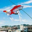 龍宝丸 鳥追い暴れん坊タカ K-901(ベランダ 鳥よけグッ
