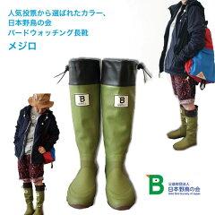 日本野鳥の会 バードウォッチング 長靴 レインブーツ新色 メジロ日本野鳥の会 バードウォッチン...