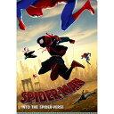 Marvel(マーベル) Spider-Man:SPIDER-VERSE(スパイダーマン:スパイダーバース) Wポケットクリアファイル [インロック]