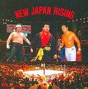 新日本プロレス NJPW New Japan Rising 橋本真也・蝶野正洋・藤波辰巳・テーマ集 CD