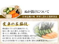 【送料無料】ぬか漬け器「ぬか楽」(日本製)