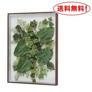 【送料無料♪】葉っぱをフレームで飾ろう!【グリーンIN3419】スリムでリッチなアートフレーム♪