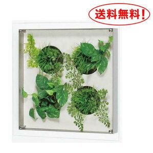【送料無料♪】葉っぱと額装で遊ぶ楽しいアート!【グリーンIN3440】デザインがかわいいスッキリパネル♪