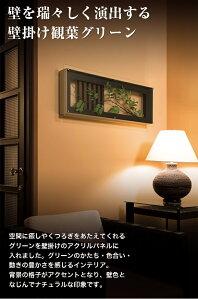 【グリーンIN3440】葉っぱと額装で遊ぶ楽しいアート!デザインがかわいいスッキリパネル♪(アート/花/観葉植物/造花/インテリア/おしゃれ/壁掛け/壁面/額入り/フレーム/飾り/通販/)