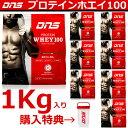 01dns-proteinwhey1-1