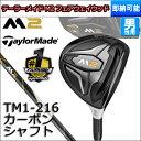 M2fw-tm1-s00