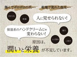 ネイルケア爪補修美容液保湿手荒れささくれヒビ割れ爪を強くする爪強化日本製NAILCARESERUMネイルケアセラム自社工場チューブ12g